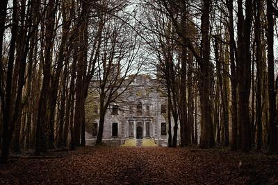 The Forgotten Homes of Ireland