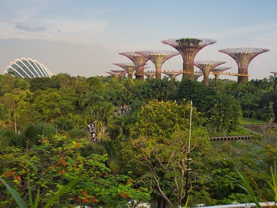 20191109 Holidays Day 03 - Singapore - Gardens by the Bay