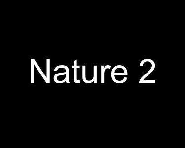 Nature 2 - AC