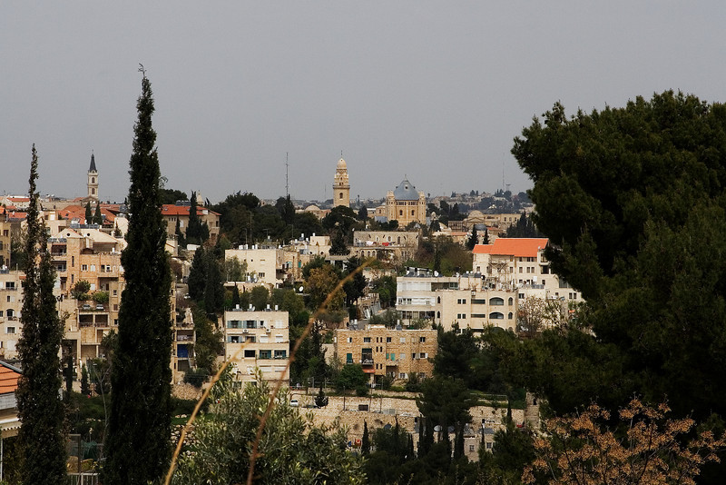 Jerusalem through the Trees.jpg