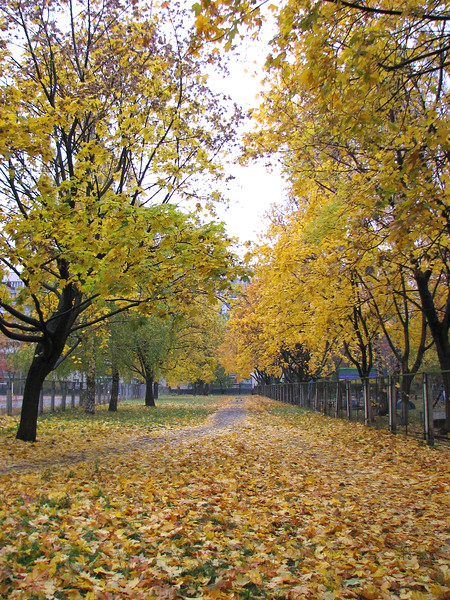 Autumn in Kyiv