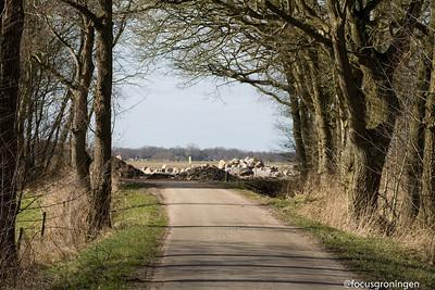 drenthe 2011-yde-kunstwerk meisje van yde-kunstenaar boer den derk