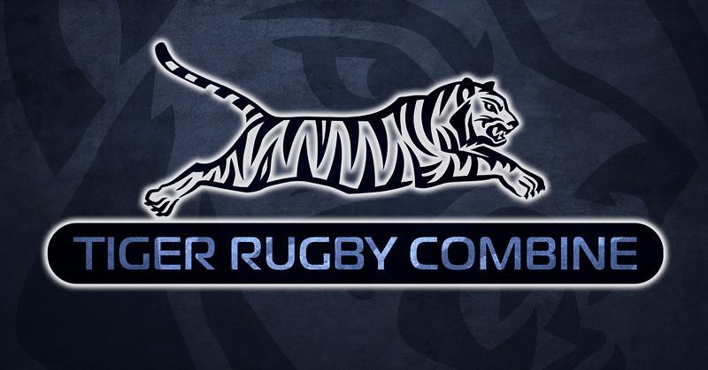 Tiger T C blue.jpg