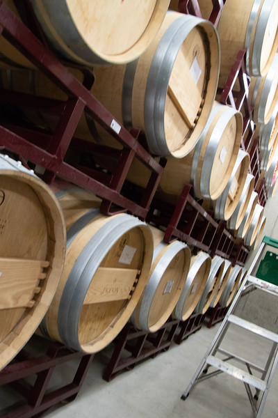 Dodon Vineyards 2018