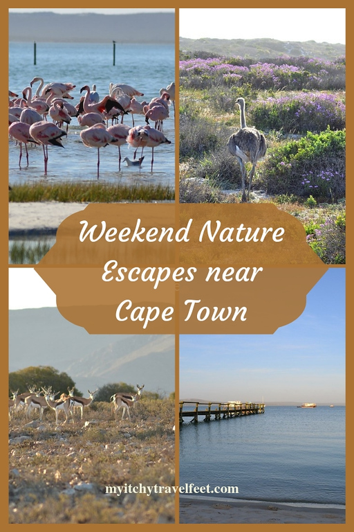 Weekend nature escapes near Cape Town
