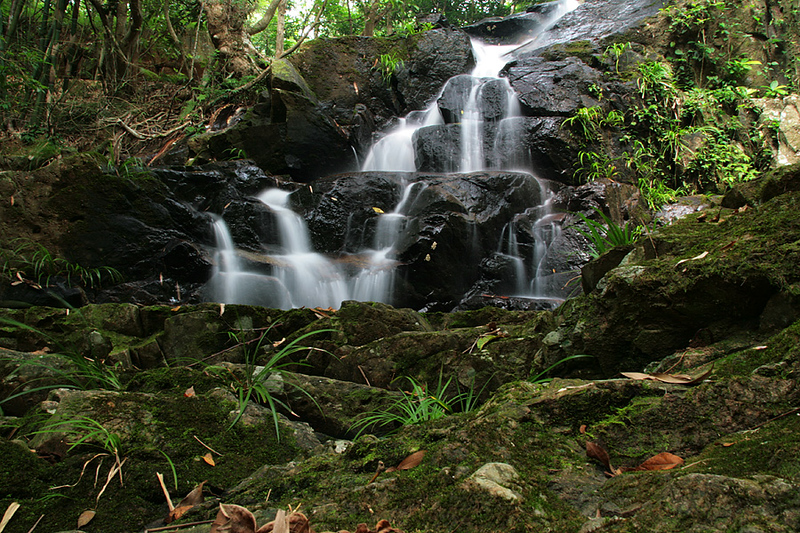 Shing Mun Country Park, Wilson Trail Stage 7, Waterfall