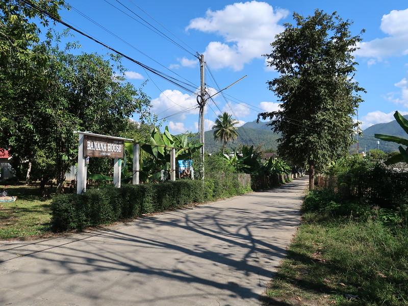 IMG_0537-banana-house-street.JPG