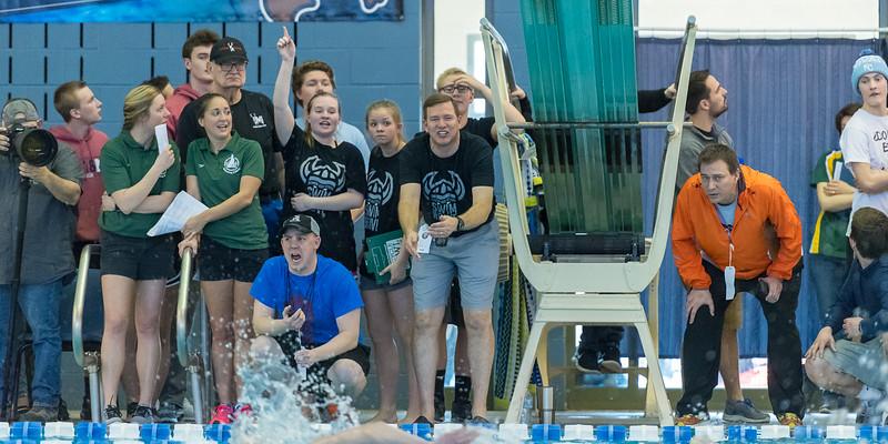 2018_KSMetz_Feb17_SHS Swimming_ State Finals_NIKON D5_5394.jpg
