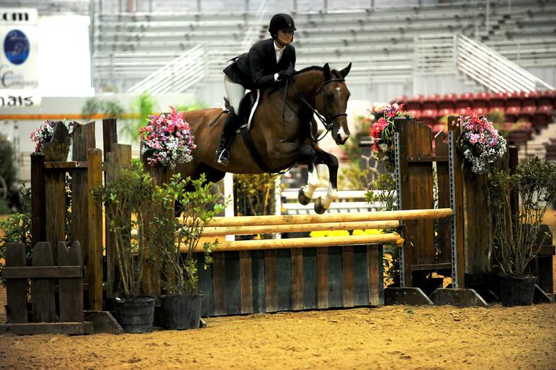 Horse show (22).jpg
