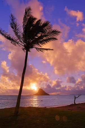 Sunrise over Mokoli'i Ilsand (AKA Chinaman's Hat). © 2020 Kenneth R. Sheide