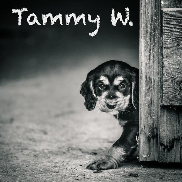 Tammy-Icons.jpg