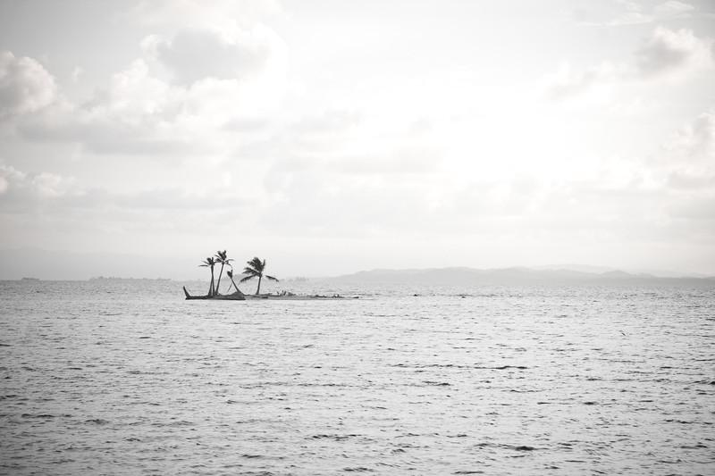 lone-island_4856857362_o.jpg