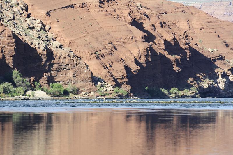 Lees Ferry Photos 064.jpg