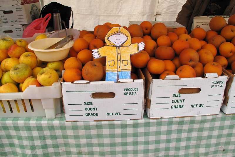 Flat Stanley at the Civic Center Farmers Market in San Francisco