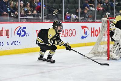 Girls Hockey Class AA 19-20