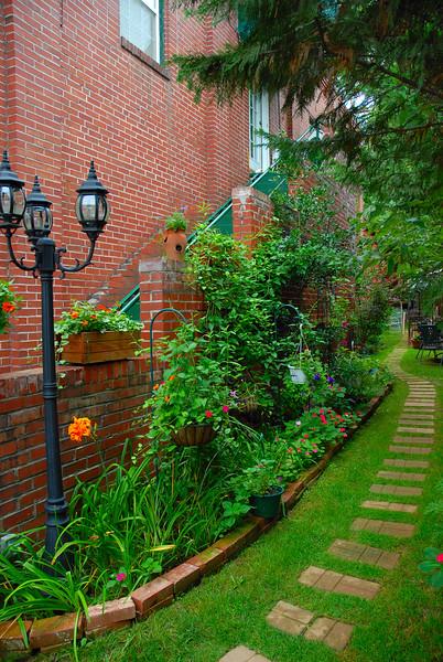 Alley Garden.jpg