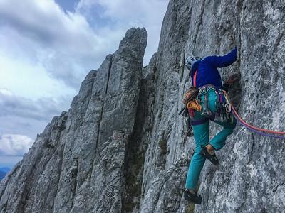 05 31 Cufer-Fon in Novi vrh