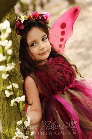Olivia's Fairy Day