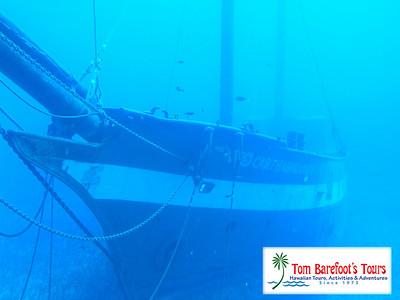 84Maui Odyssey - Atlantis Submarine