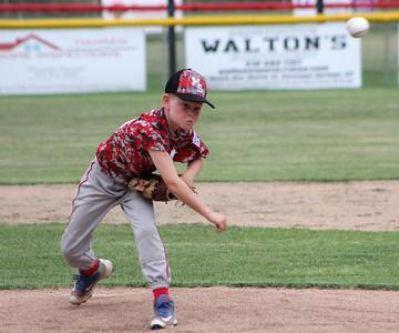 Summer Baseball 2016