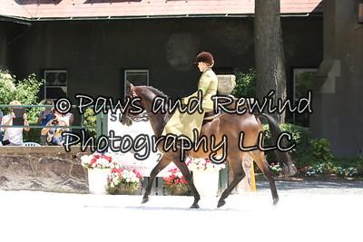 Open Equitation