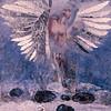 Floating Angel #11     (Price: $2500.00)