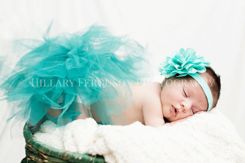 Hillary_Ferguson_Photography_Carlynn_Newborn192.jpg