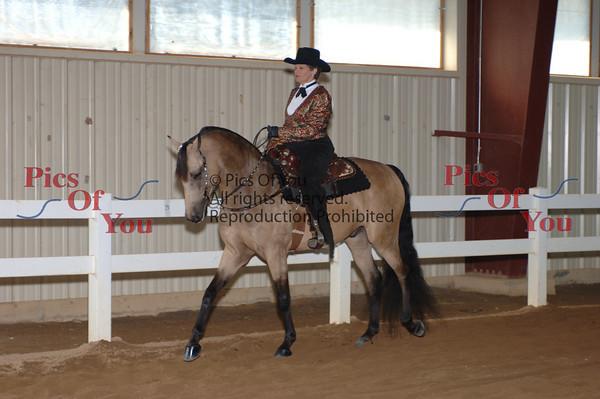 CLASS 055 Western Pleasure Junior Horse
