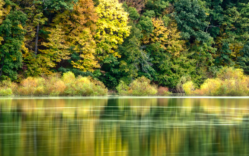 1057 - Autumn 2016 - Colors at Speedwell (p).jpg