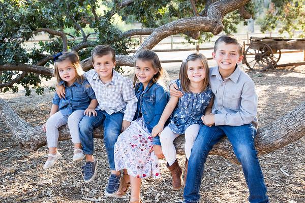 Sweeney Family 2017