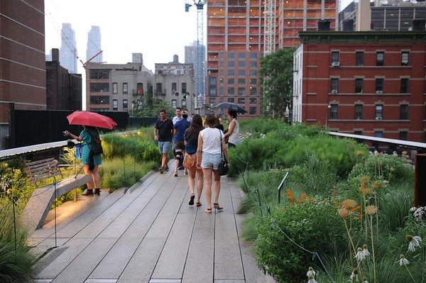 The High Line {Park}