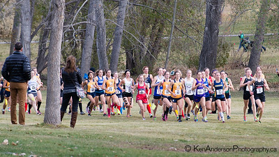 2014 CCAA Cross-Country Running National Championships