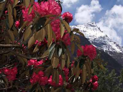 Эверест. Апрель 2006