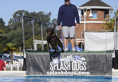 Capitola Splash Dogs Oct. 31, 2009