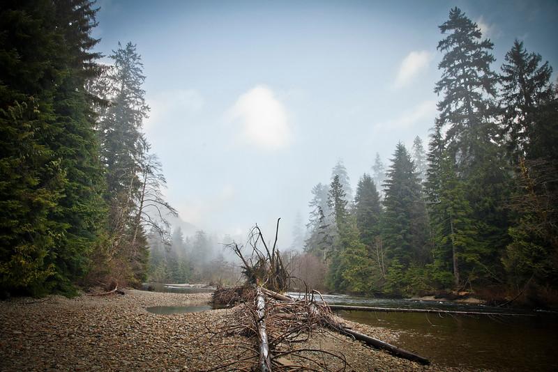 Seymour River