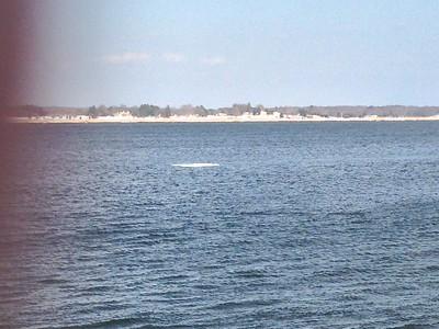 03-08-15 Saybrook Point
