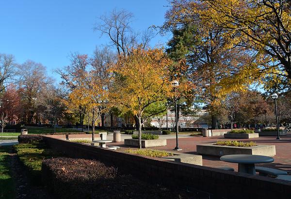 11.03.14 MU Campus