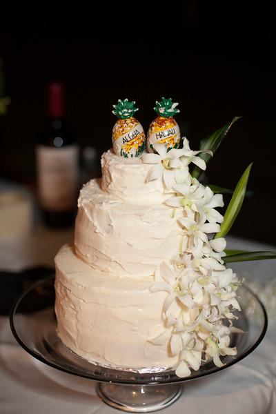 Kona Wedding photos-0181McMillen & Renz Wedding 6-10.jpg