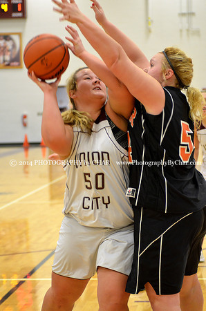 Homer vs Union City JV Girls Basketball 2-18-2014