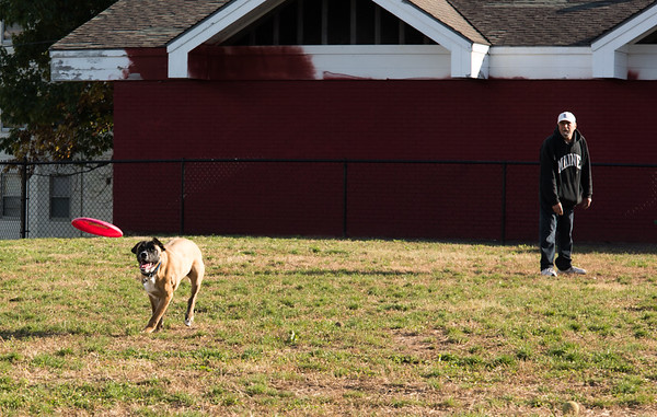 10/23/18 Wesley Bunnell | Staff Rich Kevorkian throws the frisbee for his dog Simba to catch at the dog park in Washington Park on Tuesday afternoon.