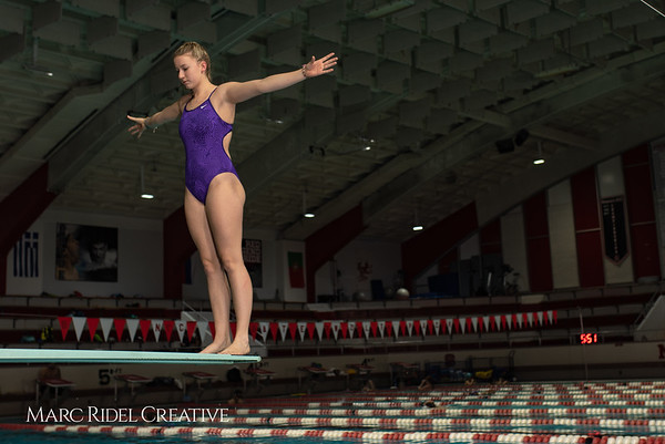 Broughton diving practice. January 7, 2019. 750_1365