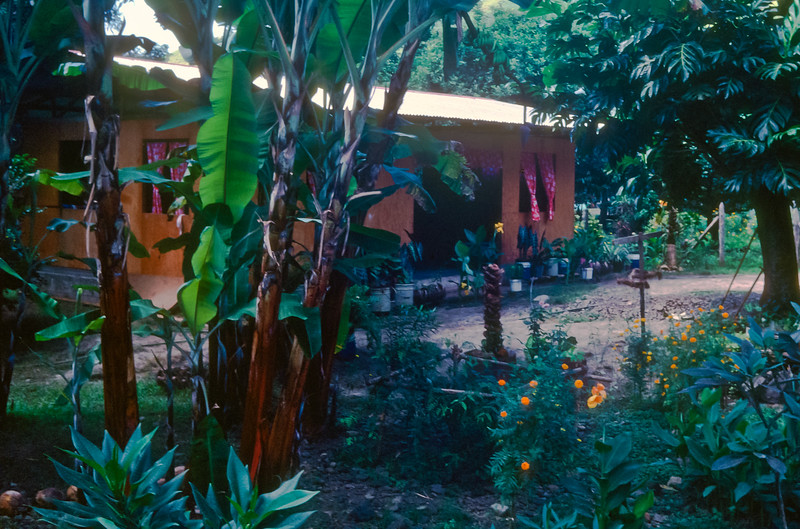 A typical Tahitian home.