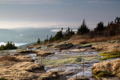 Acadia in the spring, 2014