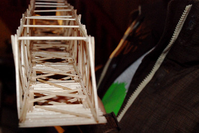2010 03:  Toothpick Bridges, Federica