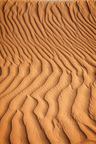 sahara desert morocco 2018 copy12.jpg