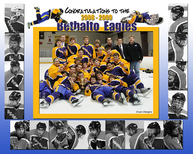 Bethalto Hockey another great season!