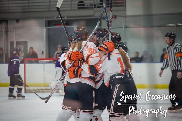 Delano Girls Hockey Vs. New Ulm