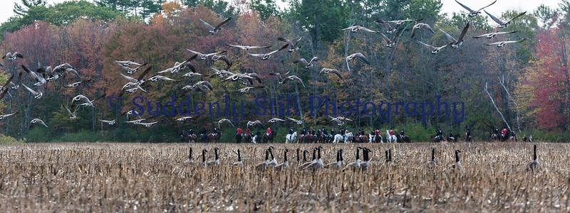 10-10 Joint Hunt @ Swan Brook Pt.1