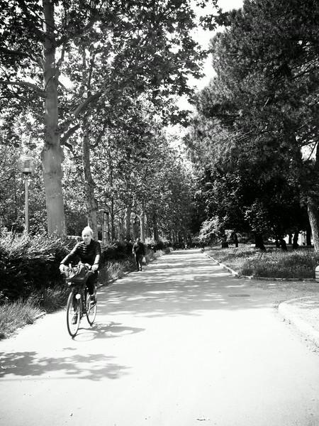 bicycle path.jpg