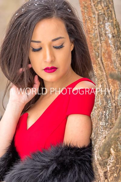 201902022019_2-2 Winter Portrait Shoot at Jeannette's221--30.jpg